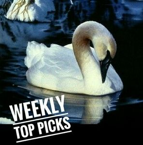 Other - My picks for the week!!!